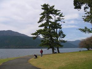 2008113_5