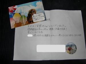 201081_11